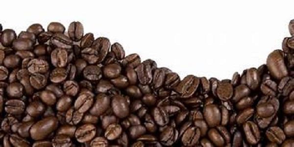 عرضه دانه قهوه