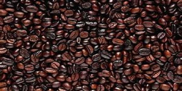 مرکز خرید دانه قهوه
