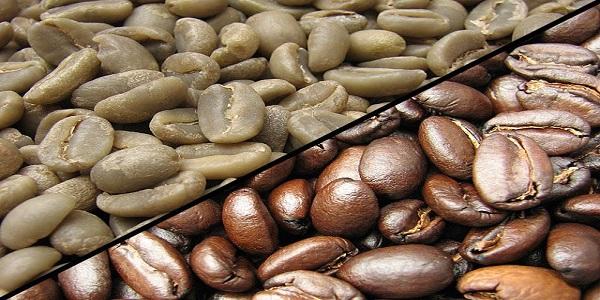 فروش عمده دانه قهوه خام
