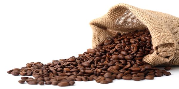قیمت فروش دانه قهوه