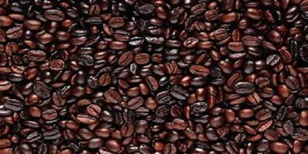 مرکز فروش دانه قهوه