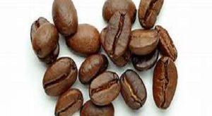 بازار فروش عمده دانه قهوه