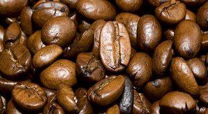 نمایندگی فروش انواع دانه قهوه