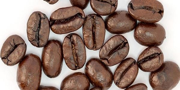 نمایندگی فروش عمده انواع دانه قهوه