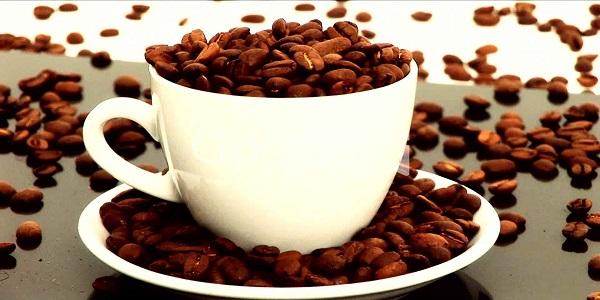 فروش عمده قهوه های با کیفیت