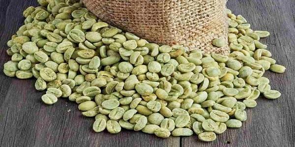 قیمت قهوه خام در ایران