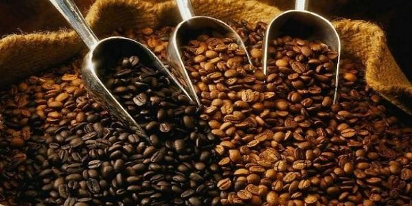 واردات دانه قهوه خام