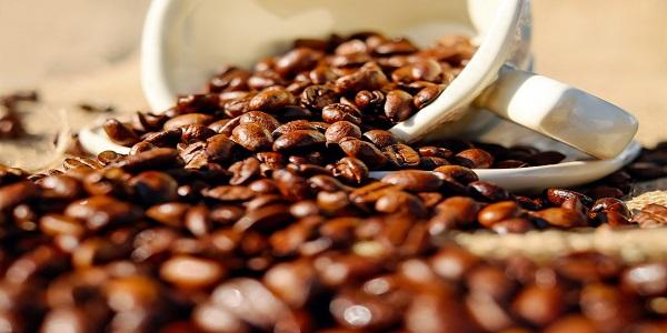 قیمت قهوه کیلویی