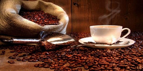 نمایندگی خرید دانه قهوه و دانه کاکائو