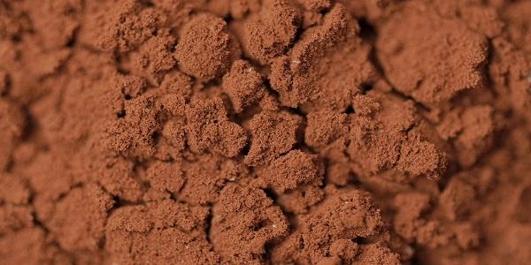 فروش تخصصی پودر کاکائو اندونزی