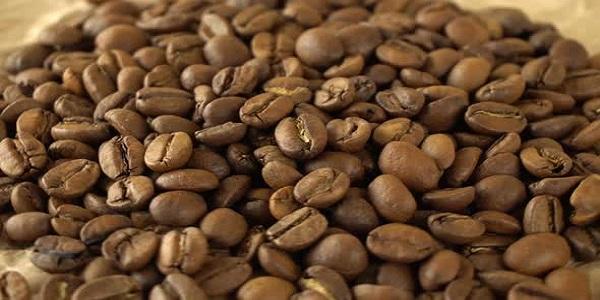 خرید دون قهوه