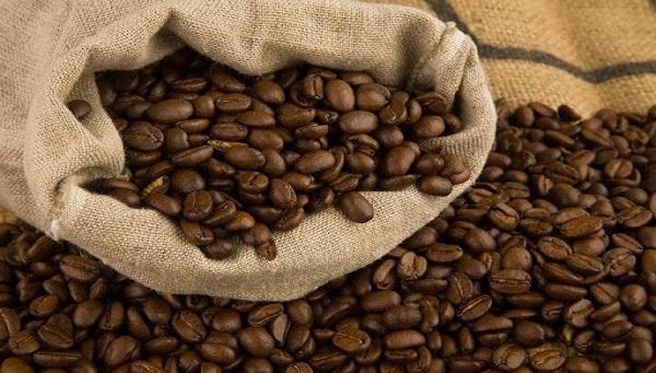 قیمت قهوه عربیکا