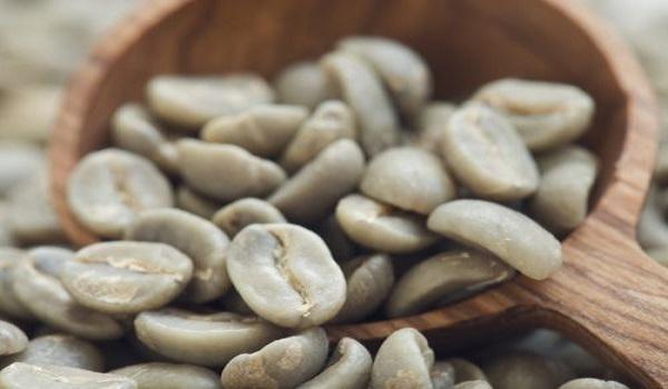مرکز فروش دانه خام قهوه ویتنام روبوستا