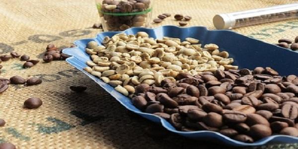 فروش بهترین قهوه های رست شده