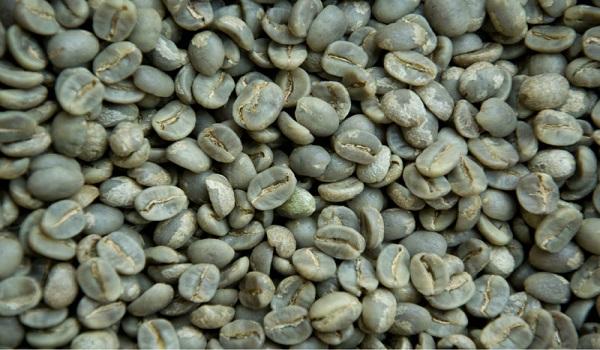 خریدار قهوه کافئین بالا