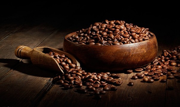 خرید مستقیم دانه قهوه از کارخانه