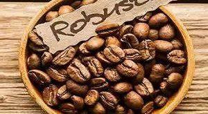 فروش دانه قهوه میکس 50 %