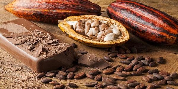 قیمت بهترین پودر کاکائو ارزان