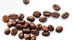 دانه قهوه عربیکا روبوستا عمده
